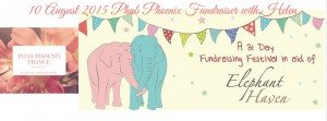 FUNDRAISING FOR ELEPHANT HAVEN dans fundraising 11535805_491556774330240_4386200314370365526_n-300x111